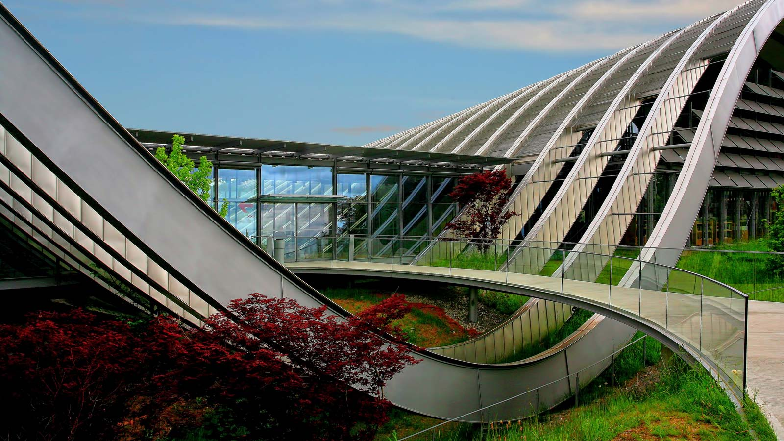 Biomimicry Design Challenge Hero Image